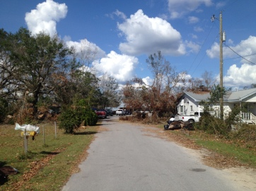 A look down Christines home road, about 8 days after Michael.